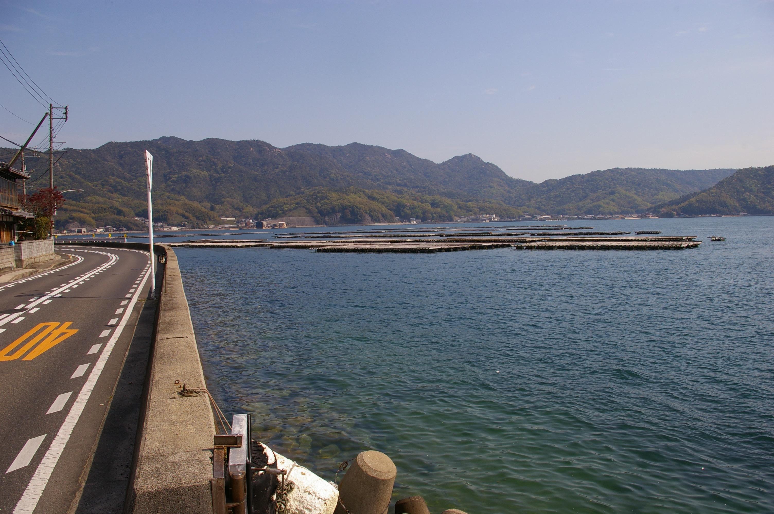 写真80(海沿いの道)